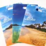 Clear-Folder-Bags