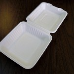 """8"""" Take Out Container  A-SH08 W9"""" × L9"""" × H3-¼"""""""